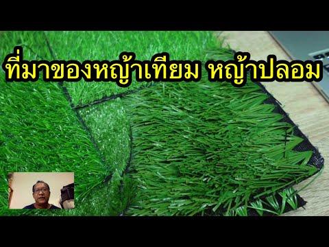ที่มาของหญ้าเทียม-หญ้าปลอม-097