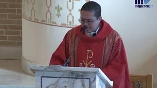 Santa Misa de hoy, viernes de la 13ª semana de Tiempo Ordinario, Santo Tomás, apóstol, 3-7-2020