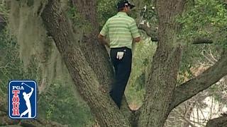 เซจิโอ การ์เซีย ลงทุนปีนต้นไม้ขึ้นไปตีกอลฟ์