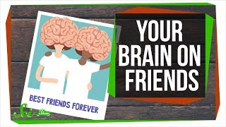 What This Video Will Do to Your Friends' Brains