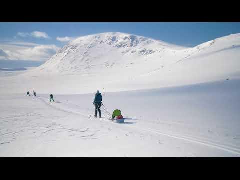 Upptäck vildmarken kring Lofsdalen