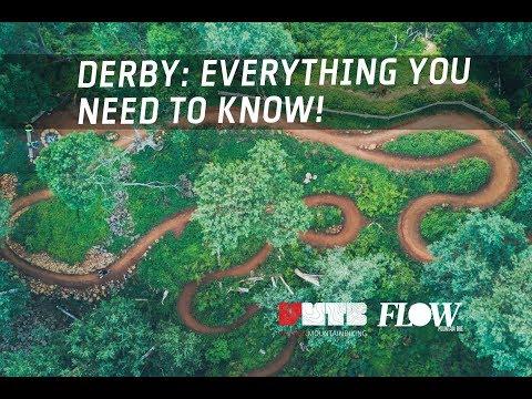 Mountain Biking Derby, Tasmania: Everything you need to know!