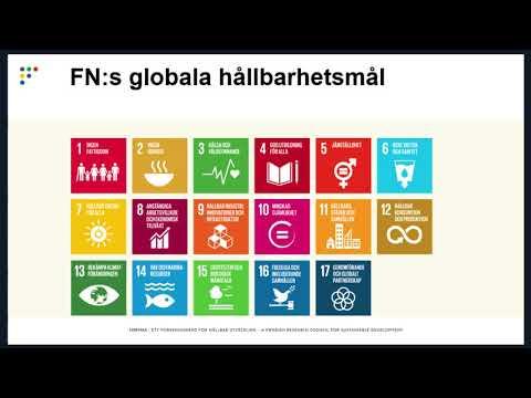Webinarium: Planeringsbidrag för forskning om de globala hållbarhetsmålen
