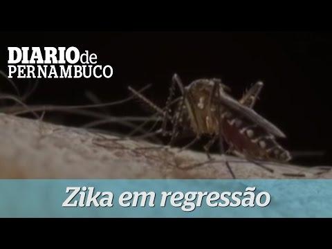 Epidemia de Zika est� em regress�o no Brasil, diz OMS
