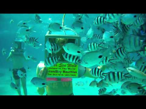 Mauritius Undersea Walk English