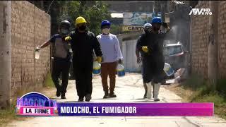 Tigresa del Oriente: Elmer Molocho ahora se recursea como fumigador