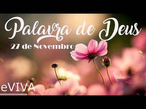 PALAVRA DE DEUS PARA HOJE 27 DE NOVEMBRO eVIVA MENSAGEM MOTIVACIONAL PARA REFLEXÃO DE VIDA