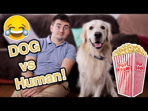 Super Funny Competition! Who Catches More Popcorn: My Dog vs. Me
