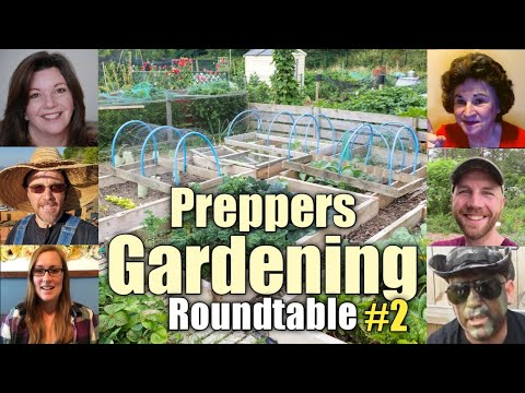 Preppers Gardening Roundtable (Part 2-ber): Live Q&A ft. YouTube Preppers