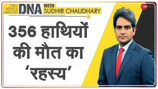 DNA: 356 हाथियों की मौत का 'रहस्य' | Sudhir Chaudhary | Analysis | The 'mystery' of elephants' death - ZEENEWS