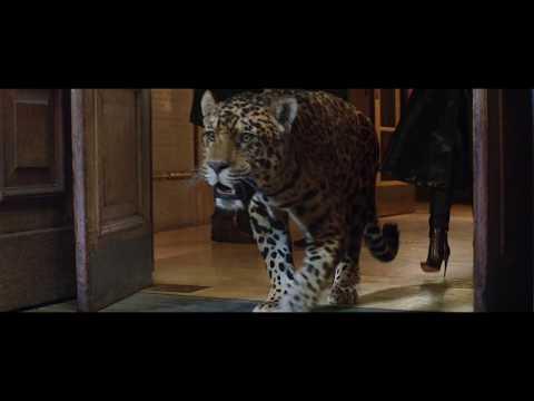 Jaguar Norge