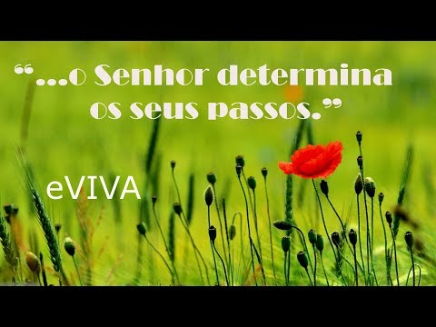 PALAVRA DO DIA 11/11/2019 - MENSAGEM DE BOM DIA MOTIVACIONAL PARA REFLEXÃO DE VIDA GOOD MORNING DAY