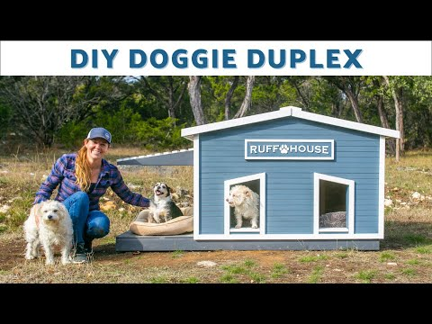 DIY Insulated Doghouse for 2 / Roof Opens for Easy Cleaning / Built in One Day! photo
