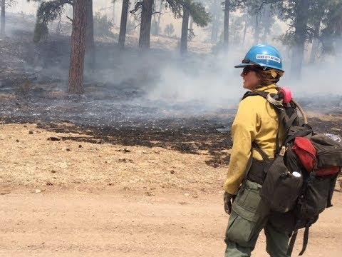 Gila National Forest Prescribed Burn
