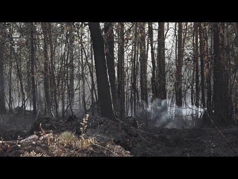 Skogsbranden i Älvdalen - torsdag 19/7