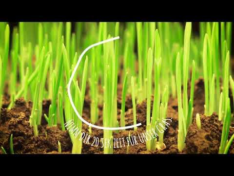 Arla BIO | Nimm dir Zeit für unser Gras