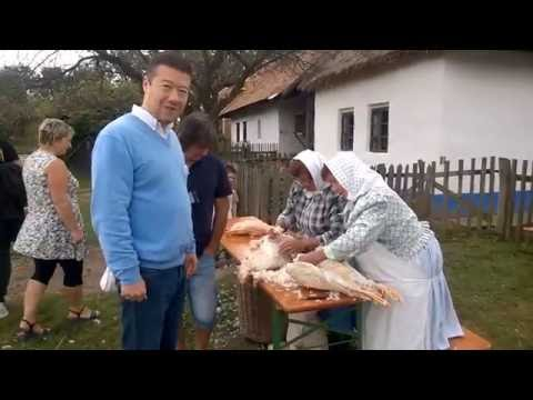 Tomio Okamura: Osekávání chrástu, škubání husy a burčák
