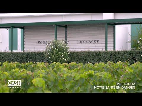 Des pesticides interdits autour des écoles - Cash Impact Nouvel Ordre Mondial, Nouvel Ordre Mondial Actualit�, Nouvel Ordre Mondial illuminati