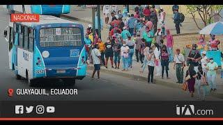 Conductores de buses no respetan la capacidad permitida -Teleamazonas