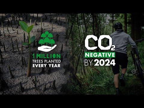 Eine Million Bäume, auf dem Weg CO₂ - negativ zu werden