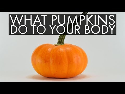 Pumpkin Nutrition: 5 Things You Do Not Know