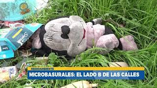 Microbasurales aumentaron durante la pandemia en el Gran Concepción