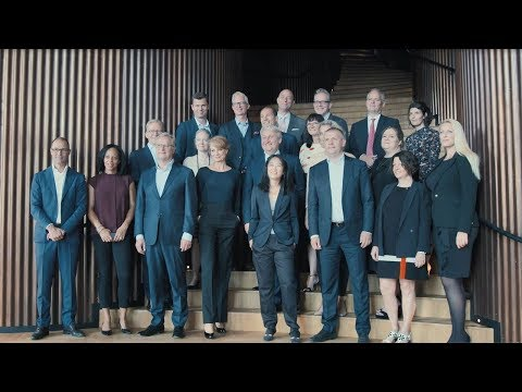 The Danish Diversity Council - PwC