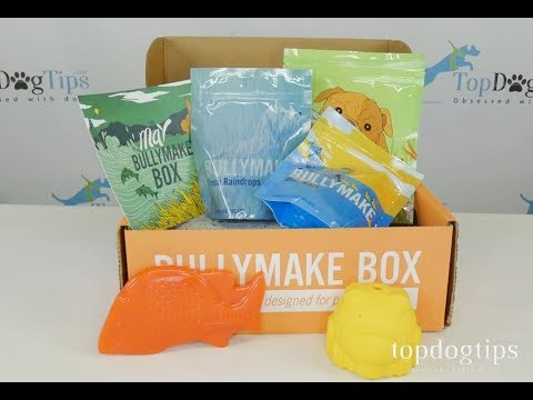 May 2019 Bullymake Dog Subscription Box Unboxing