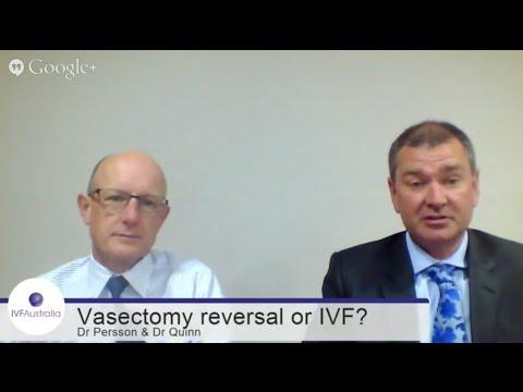 Vasectomy reversal or IVF? | IVFAustralia