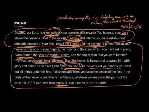 Psalm 8 // Majesty in Meekness