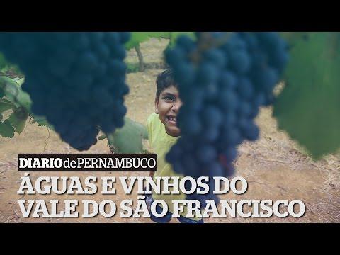 Rotas PE - Águas e vinhos do Vale do São Francisco