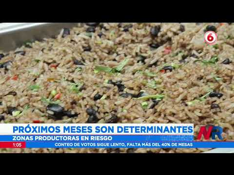 Agricultores de arroz centroamericanos en riesgo por TLC