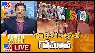పొలిటికల్ జంక్షన్ లో గోమాత || Flash Point - TV9 - TV9