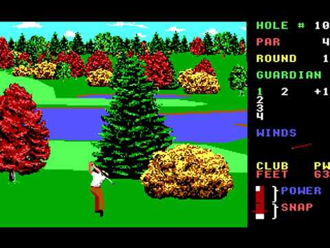 World Class Leader Board (Course D: Gauntlet Country Club) (Access) (MS-DOS) [1989] [PC Longplay]