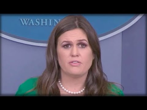 REPORTER ASKED IF TRUMP WORKED WITH RUSSIA, WHAT SARAH SANDERS SAID NEXT MADE HIM GASP