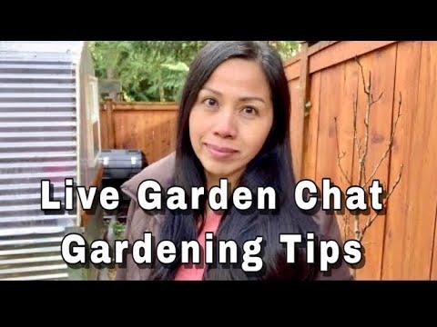 Quick Garden Tips When To Start Seeds Indoors (LIVE- REPLAY )