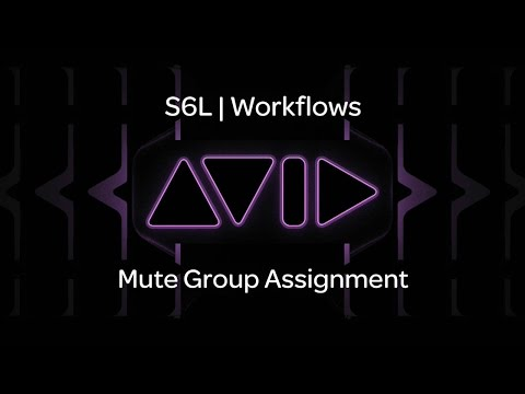 VENUE | S6L — Mute Group Assignment