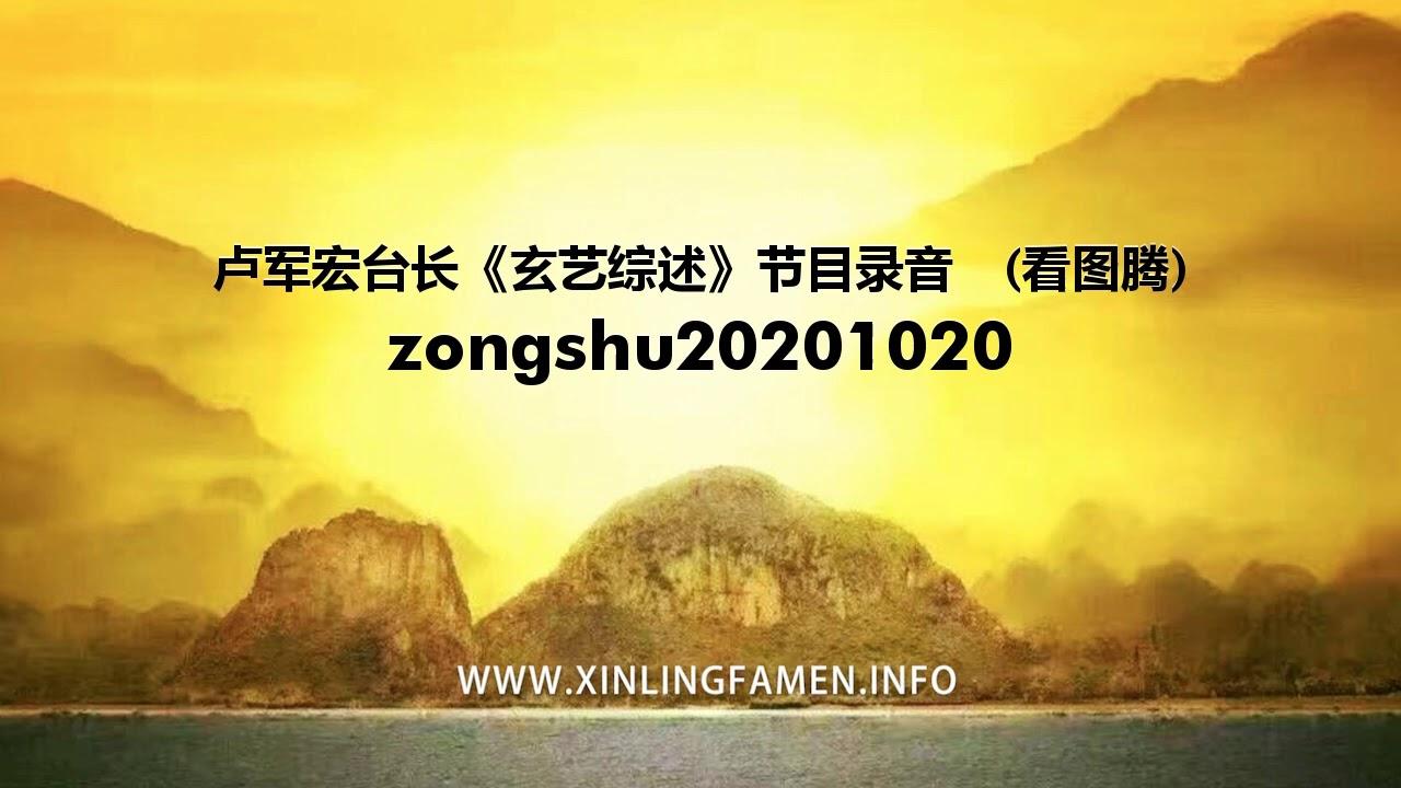心灵法门 zongshu20201020 - 卢军宏台长《玄艺综述》节目录音  (看图腾)