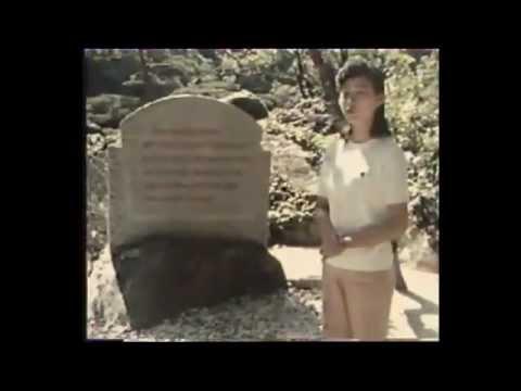 O czym marzy kobieta w Korei Północnej?