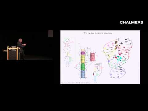 David Lilley: How does RNA act like an enzyme?