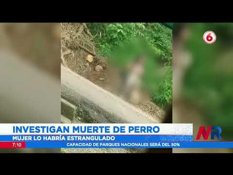 Detienen a mujer acusada de estrangular un perro