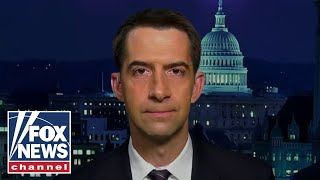 Sen. Cotton unveils bill prohibiting stimulus for people in US illegally