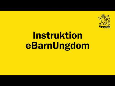 Instruktion eBarnUngdom
