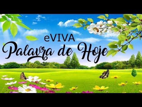PALAVRA DE HOJE 11 DE FEVEREIRO eVIVA MENSAGEM MOTIVACIONAL PARA REFLEXÃO DE VIDA - BOM DIA!