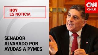"""Senador Alvarado (UDI) y ayuda a pymes: """"El proyecto que va a salir mañana es bastante más generoso"""""""