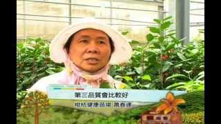 客家身影-农业系列