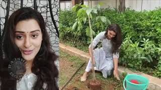 Actress Payal Rajput Accepts Green India Challenge | Payal rajput Latest News - RAJSHRITELUGU