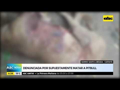 Mujer denunciada por, supuestamente, matar a un pitbull