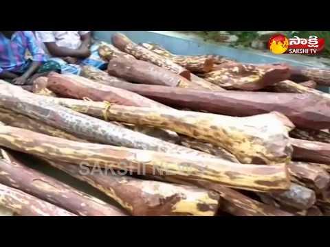 Police Arrested Red Sandalwood Smugglers in Chittoor District || ఎర్ర  చందనం స్మగ్లింగ్