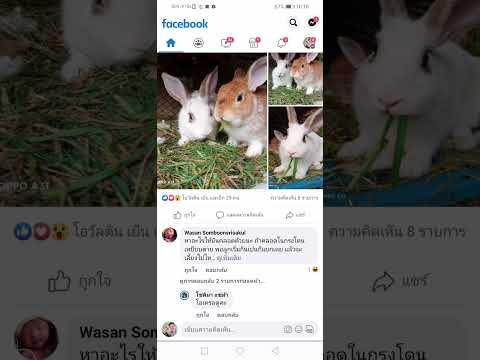 วิธีแก้ไข-facebook-กดดูรูปที่ม